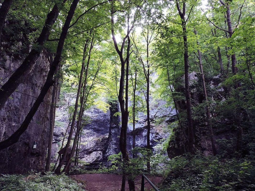 1597929787-jaskyna.jpg