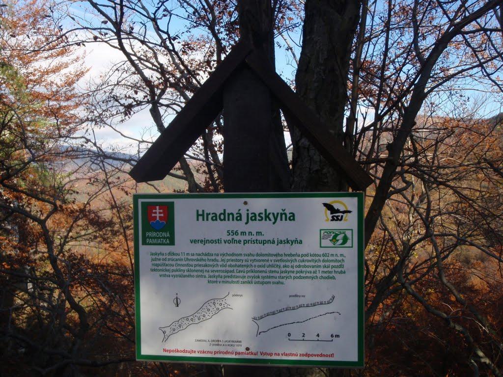 Foto: www.panoramio.com Homer J