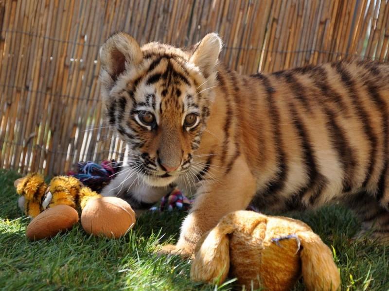 Foto: www.travelguide.sk