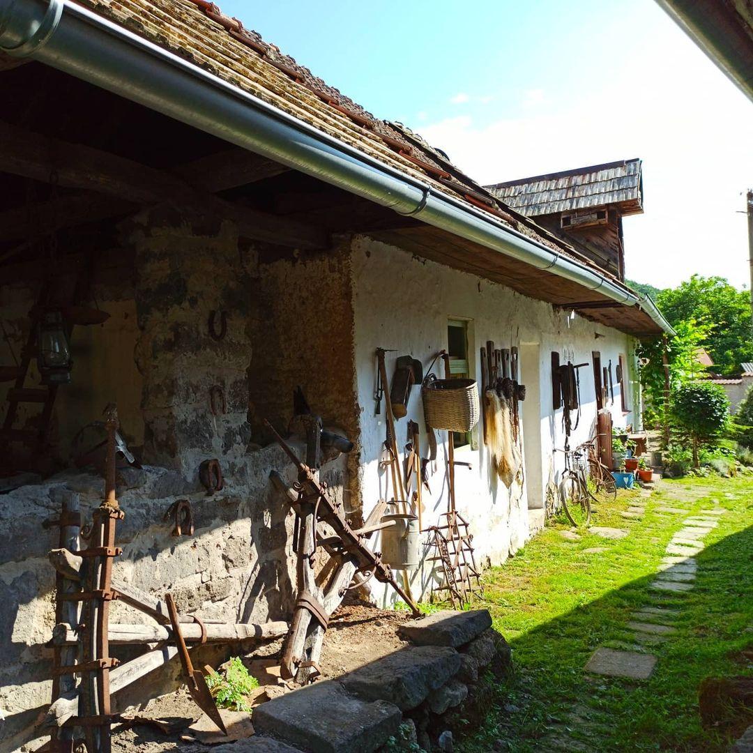 1618936981-lisovmuzeum-1618936392141.jpg